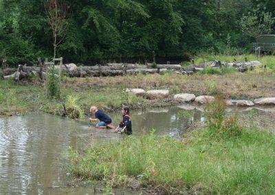 waterberging park Bijdorp