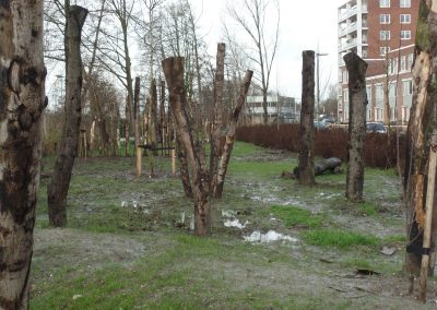 donnerstraat net na aanleg